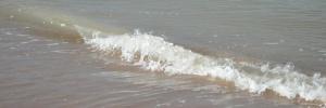 Wave - Bude