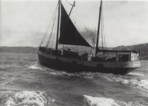 Traly towards Bull Point 1955